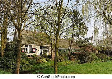 fattoria, romantico, olandese