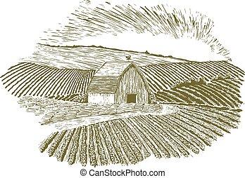 fattoria, rurale, regolazione, woodcut