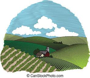 fattoria, rurale, vignette, scena, colorare