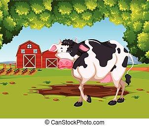 fattoria, scena, mucca