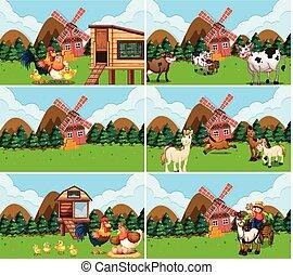 fattoria, set, animali, scene