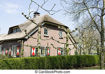 fattoria, tipico, olandese