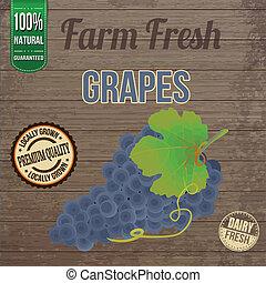 fattoria, vendemmia, fresco, uva, manifesto
