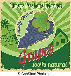 fattoria, vendemmia, uva, manifesto