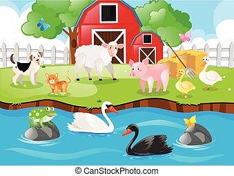 fattoria, vivente, animali