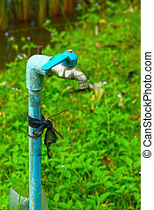 Faucets and grass