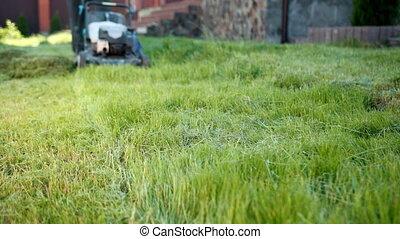 fauchage pelouse, jardinier, ensoleillé, herbe, jour, appareil photo, vert, faucheur, bas, homme