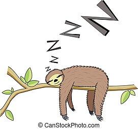 faultier, karikatur, eingeschlafen
