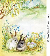 fauna, aquarela, collection:, coelho
