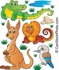 fauna, australiër, 2, set, fauna