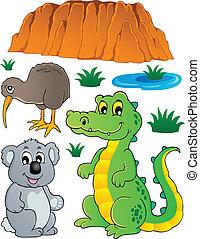 fauna, australiano, conjunto, fauna, 3