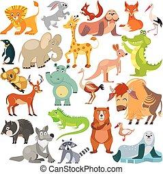 fauna., mundo, encima, reptiles, animales, vector, alphabet., divertido, todos, aves, conjunto, ilustración, world.