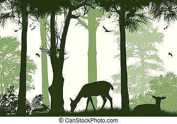 fauna, poster., deers, silhuetas, floresta, branca