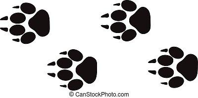 fauna, rastros, pé, isolado, trilhas, vector., desenho, impressões, animal, passos, conceito, branca