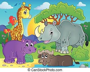 fauna, téma, 3, kép, afrikai