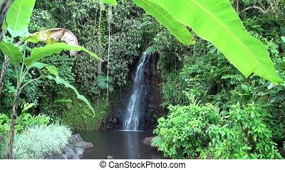 Fautaua Waterfall in French Polynesia on Tahiti Island.