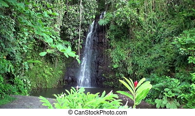 Fautaua Waterfall in French Polynesia on Tahiti Island....