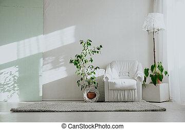 fauteuil, blanc, intérieurs, vert, salle