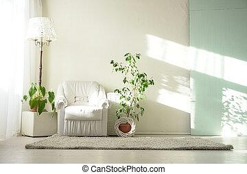 fauteuil, intérieurs, blanche salle, vert
