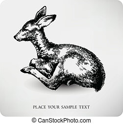 Fawn Hand drawn high quality vector