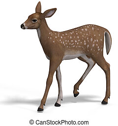 Fawn - young doe or fawn With Clipping Path and shadow