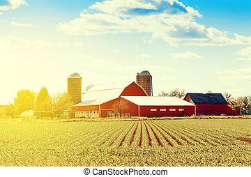 fazenda, americano, tradicional