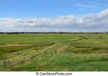 fazenda, essex, paisagem