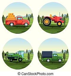 fazenda, jogo, desenhos animados