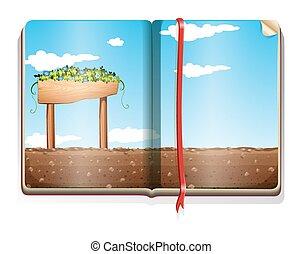 fazenda, livro, cena