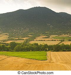 fazenda, montanhas, campo