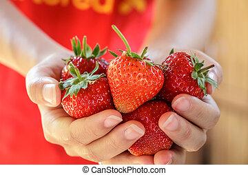 fazenda, moranguinho, morangos, escolhido, fresco