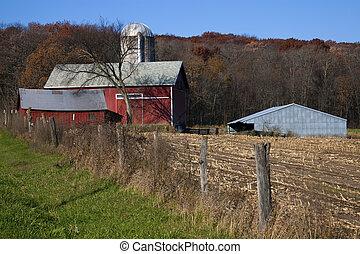 fazenda, outono, vermelho, tempo