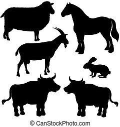 fazenda, silhuetas, vetorial, animais
