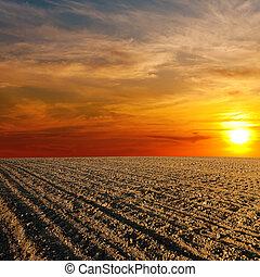 fazenda, sobre, campo, pôr do sol, ploughed, vermelho