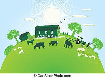 fazenda, verde