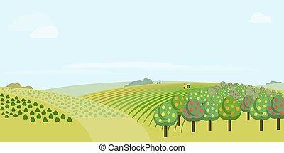 fazenda, vetorial, campo, ilustração
