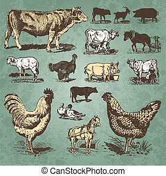 fazenda, vindima, jogo, animais, (vector)