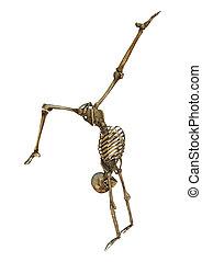 fazendo, branca, esqueleto, human, 3d