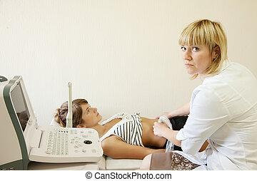 fazer, investigação, doutor, ultrasom