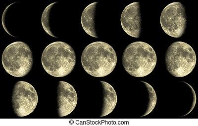 fazy, pełny, -, żółty księżyc