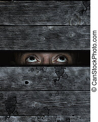 fearful - anxious eyes behind old wooden planks wound