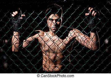 fearles, mma, luchador, listo para pelear