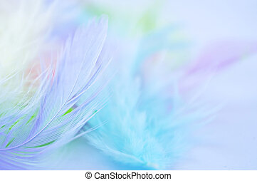 Feather background - Background for design with soft...