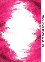 feather borders - pink feather border and frame