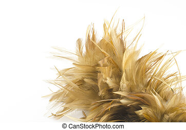 Feather broom isolated on white
