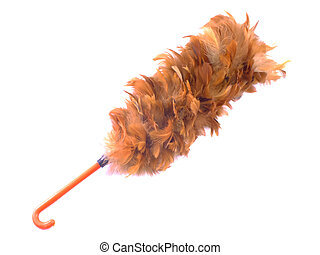 feather duster isolated on white background