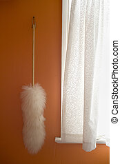 Feather Duster on Orange Wall - Photo of a Feather Duster on...