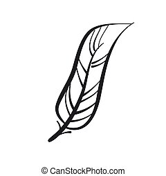 Feather. Hand drawn, stylized, peacock feather on a white background.