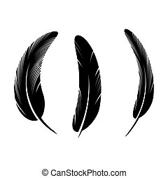 feather icon Vector Illustration design Logo