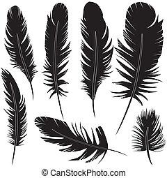 Feather of bird set vector illustration sketch